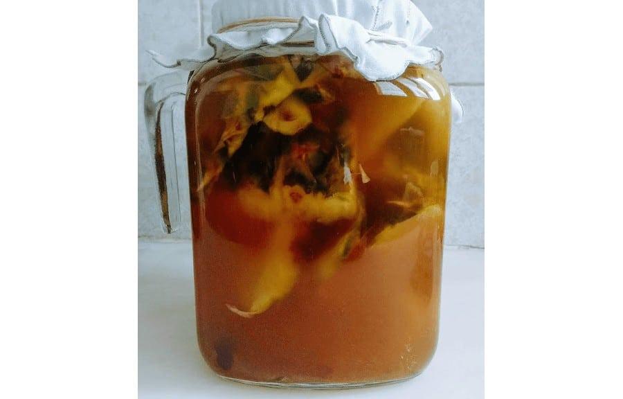 fermentación del tepache